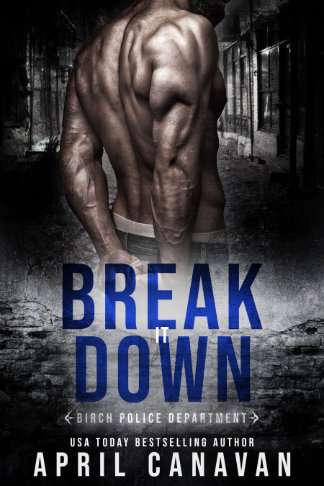 book cover for April Canavan book Break it Down